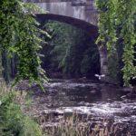 Toledo Center - Gallery Image Bridge